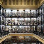 5 lugares para conhecer no Brasil se você ama livros